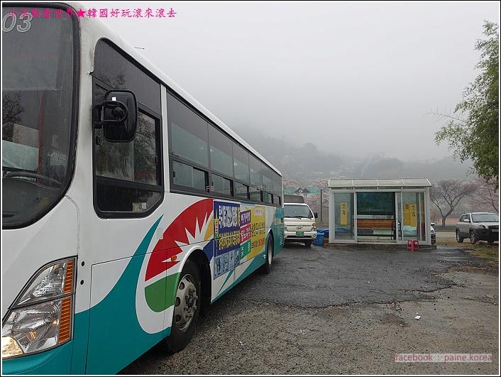 河東花開十里路 (8).JPG