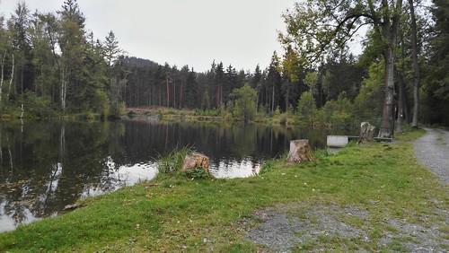 Okolo rybníka ...