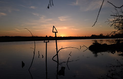 Sunrise on Thames (Free.heel) Tags: thames sunrise oxford riverthames