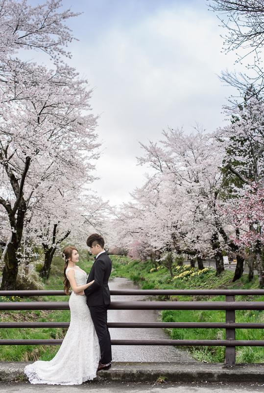 日本婚紗,東京婚紗,河口湖婚紗,海外婚紗,新祕藝紋,新祕Sophia,婚攝小寶,cheri wedding,cheri婚紗,cheri婚紗包套,KIWI影像基地,DSC_6806