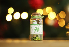 Christmas Wishes (photography by Paul Reid) Tags: santa christmas ireland irish green love home festive scotland cozy flickr nightlights bokeh warmth christmastree christmaslights depthoffield dreams hopes wishes rudolph fourleafclover luckycharm luckoftheirish 2015 4leafclover flickr500