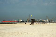 jumeirah spiaggia v (10) (Parto Domani) Tags: beach dubai united uae playa arabic east emirates arab oriente middle peninsula medio spiaggia uniti arabi jumeirah arabica penisola emirati