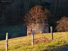 CREMAUX (BPBP42) Tags: sunrise fence barriere leverdesoleil