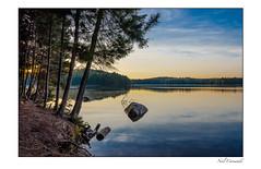 Shoreline Sunrise (Neil Cornwall) Tags: camping ontario canada september wilderness canoeing algonquinpark 2015 burntislandlake nikond7000 magicmomentsinyourlifelevel3 magicmomentsinyourlifelevel4