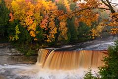 Tahquamenon Falls (2016-10-19 8263) (bechtelsf) Tags: tahquamenonfalls michign michigan upperpeninsula waterfall morning fog river water fall autumn leaves fallcolor nikon d810
