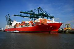 Atacama DST_5008 (larry_antwerp) Tags: psa psaterminal container atacama ccni antwerp antwerpen       port        belgium belgi          schip ship vessel        schelde        nsc nscholdings nscholding