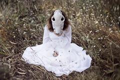 (sandratei) Tags: portrait calavera skull nature
