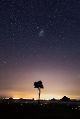 Standing Taller Than the Mountains (Kristin Repsher) Tags: australia d750 lonetree longexposure maleny nightphotography nightsky nikon queensland southeastqueensland starrysky stars sunshinecoast sunshinecoasthinterland