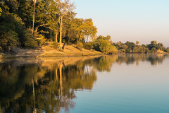 South Africa 2016 (mcmessner) Tags: adventure africa bj boat reflection river sunrise sunriseboatride tongabezi tongabezilodge water zambeziriver zambia livingstone