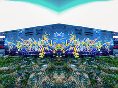 The Frog Prince (Steve Taylor (Photography)) Tags: frog symmetry art digital graffiti mural streetart building blue purple green yellow white newzealand nz southisland canterbury christchurch cbd city weeds sky wasteground