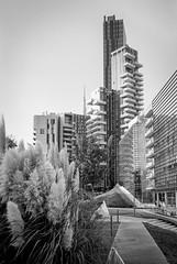 Solaria (attilio.pirino) Tags: tower building architecture milan torre edificio architettura milano italia italy bw bn leica m6 color skopar 35mm kodak tmax