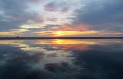 IMG_0014x (gzammarchi) Tags: italia paesaggio natura mare ravenna lidodidante alba aurora nuvola riflesso