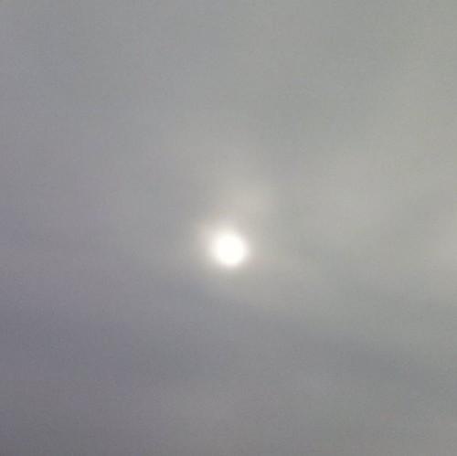 #sole velato