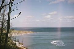 crowdem (Xavier Roeseler) Tags: devon crows 35mm analogue ae1 grainisgood bluer than blue seascape oceanvibes
