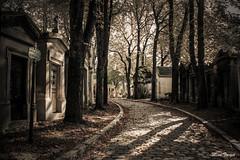 At the end of the way. (Diana Gallego) Tags: prelachaise cemetery cementerio paris way camino end death graves autumn canon canoneos60d 1855