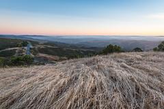 Windy Hill (zh3nya) Tags: bayarea sfbaypenininsula skylineblvd midpeninsula california ca norcal northerncalifornia grass sunset goldenhour matte road wide fog mposp midpen d750 20mm nikon20mmf18 twilight hills rolling summer