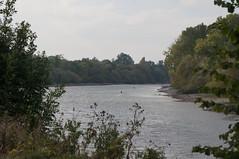 DSC09244 (jiving John) Tags: wisy walk riverthames richmond barnes