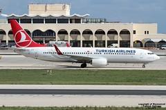 TC-JVY LMML 12-11-2016 (Burmarrad) Tags: airline turkish airlines aircraft boeing 7378f2 registration tcjvy cn 60024 lmml 12112016