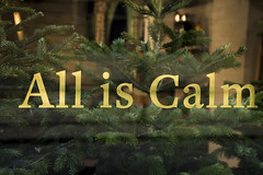 All is calm (96of365) (Reckless Times) Tags: all is calm gold type window with green tree fern fir behind reflection shop oxford uk england university town city cool nikon d750 365 project