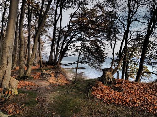 Autumn mood on the Baltic Sea coast