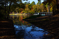 A Walk In The Park - 111716-114920 (Glenn Anderson.) Tags: cliffsofthenesue neuseriver sevensprings autumn boathouse nikon trails trees color lake water boats bluesky reflection leaves hicking outdoor river landscape serene foliage architecture bright plant sky spillway