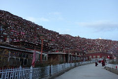 DSC00621 (A lonely journey of life) Tags:            sichuan china seda luoruoxiang larunggar tibet