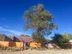 Taos, Santa Fe, and Surroundings - 10 (Bruno Rijsman) Tags: taos santafe newmexico bruno tecla