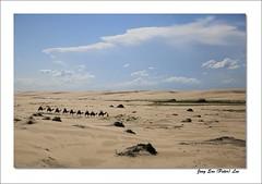 Stockton sand dunes (jongsoolee5610) Tags: landscape annabay stocktonsanddunes dune australialandscape sydney