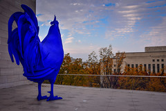 Katharina Fritsch - Electric Blue Rooster (Hahn/Cock), 2013 on the Rooftop terrace at the National Gallery of Art - East Wing - Washington DC (mbell1975) Tags: washington districtofcolumbia unitedstates us katharina fritsch electric blue rooster hahncock 2013 rooftop terrace national gallery art east wing dc museum museo muse musee muzeum museu musum mze finearts fine arts gallerie beauxarts beaux galleria washingtondc usa america nga chicken hahn statue sculpture