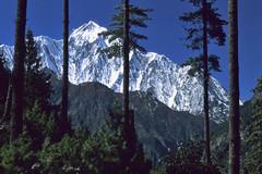 TREKKING ANNAPURNA.. (lupus alberto) Tags: nepal circuitoannapurna himalaya