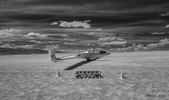 20161203_1052827 (i-lenticularis) Tags: bunyan contaxg21f28 soaring gliding volvoile segelflug bunyanairfield australia canberraglidingclub infrared ir infraredbw ricohgxra12ir