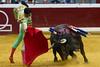 DSC_9320.jpg (josi unanue) Tags: animal blood spain bull arena bullfighter sansebastian esp toro traje asta sangre espada bullring unanue guipuzcoa matador torero tauromaquia sufrimiento cuerno ureña banderilla banderilero