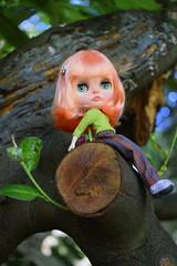Trip to Vitoria Gasteiz with Tina (Les Kawaiis!) Tags: toy doll hobby kawaii blythe custom collectable mueca blythedoll customdoll customwork blytheclone leskawaiiscustom