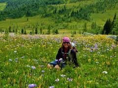7-095 (Gnarlene) Tags: flower hiking banff healypass monarchramparts