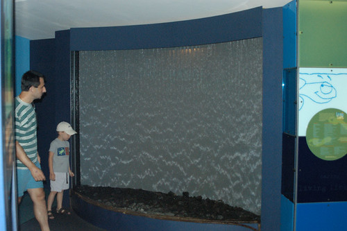 New England Aquarium -2