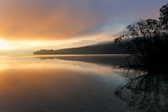 Morning Mist - Slovenia, Lake Bohinj (Nomadic Vision Photography) Tags: summer europe slovenia bohinj julianalps triglavnationalpark jonreid bohinjvalley tinareid nomadicvisioncom