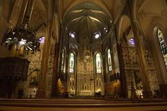 Bazylika Św. Patryka | St. Patrick's Basilica