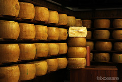 Parmigiano Reggiano - Parmesan Cheese Shop (Felix Cesare) Tags: italy food kitchen cheese blog italian italia pattern candid patterns columns streetphotography blogger row pasta wanderlust delicious foodporn rows bologna nomad column parma cheddar parmesan reggiano nomads italianfood travelblog goodfood parmigianoreggiano bolognese candidshot cheeseshop formaggio italianguy parmigiano italianpasta foodlover italiancheese formagio traveltravelphotography formaggiocheese travelporn fly4free cheesepattern parmesancheeseshop