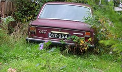 DYO 954J (Nivek.Old.Gold) Tags: volvo automatic 164 1970 2979cc
