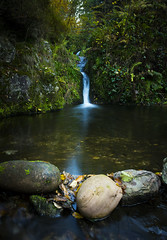 Waterfall (Sijie Shen) Tags: autumn trees black color leaves vertical forest germany landscape waterfall europe long exposure image schwarzwald oppenau