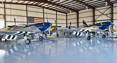 Stallion 51 Hangar (Dave & Nicole Moore) Tags: plane vintage airplane flying loop wwii mustang splits crazyhorse aerobatics p51 p51mustang p51d fighterplane immelman stallion51 wwiifighter pointroll crazyhorse2 aileronroll cuban8