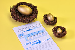 Project 365 - 11/24/2015 - 328/365 (cathy.scola) Tags: nest eggs savings retirement odc nestegg project365