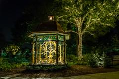 Seasonal Christmas Lights-2552 (RG Rutkay) Tags: lighting decorations plants night landscape lights dallas display seasonal arboretum theme partridge twelvedaysofchristmasdisplay