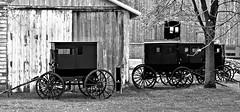 Amish Farm (forestforthetress) Tags: blackandwhite bw barn rural nikon outdoor farm amish buggy arcola omot