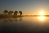 South Dakota Luxury Pheasant Hunt - Gettysburg 73