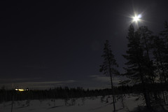 Laponie (Maxime's pictures) Tags: winter light moon snow tree night lune finland lumière hiver lapland kuusamo neige nuit arbre ruka finlande laponie rukasalonki