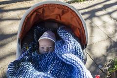 Paul (quinn.anya) Tags: shadow paul stroller potd blanket kotd8