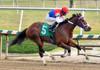 "2015-12-13 (27) r2 Victor Carrasco on #5 Anna May Our Queen (JLeeFleenor) Tags: photos photography md marylandracing marylandhorseracing laurelpark jockey جُوكِي ""赛马骑师"" jinete ""競馬騎手"" dżokej jocheu คนขี่ม้าแข่ง jóquei žokej kilparatsastaja rennreiter fantino ""경마 기수"" жокей jokey người horses thoroughbreds equine equestrian cheval cavalo cavallo cavall caballo pferd paard perd hevonen hest hestur cal kon konj beygir capall ceffyl cuddy yarraman faras alogo soos kuda uma pfeerd koin حصان кон 马 häst άλογο סוס घोड़ा 馬 koń лошадь maryland"