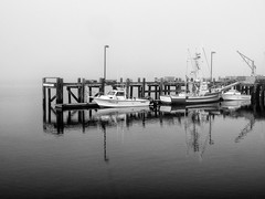 A Foggy Day in Bodega Bay (Stephen Sarhad) Tags: fog bodegabay boat water ca usa