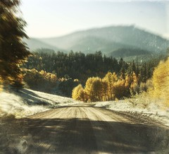 road to gold (jssteak) Tags: canon t1i road vintage mountains morning sunrise trees forest fall autumn hdr